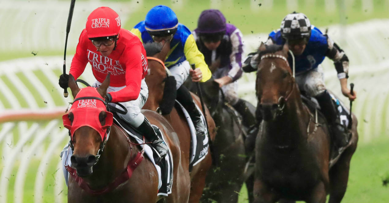 Redzel The everest October 13 2018